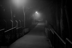 Dark Night1